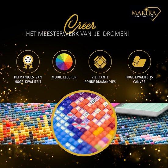 Meegeleverd Diamond Painting Max Verstappen: ✅Canvasdoek met voorbedrukte afbeelding ✅Schudbakje met smalle tuit ✅Pen ✅Wax blokje ✅Pincet