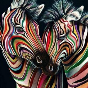 Diamond painting gekleurde zebras