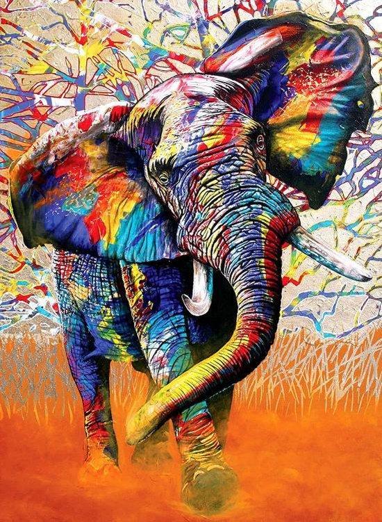 Schilderen op nummer kleurrijke olifant